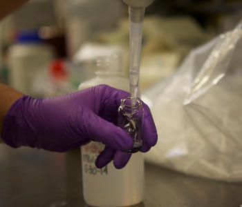 a purple gloved hand fills a test tube in an Illinois Chemistry Lab